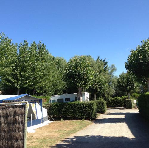 Offres spéciales dans notre camping à Saint Jean de Monts